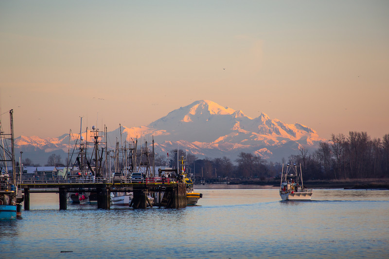 Mount Baker makes a beautiful backdrop for Steveston Harbour. Photo taken from Garry Point Park.