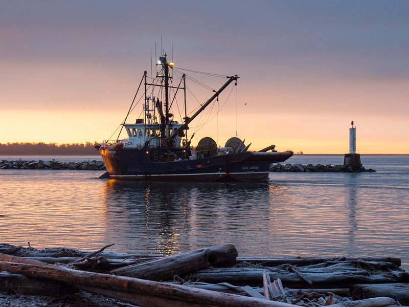 "Fishing boat ""Ocean Achiever"" comes into Steveston Harbour at sunrise. Photo taken from Garry Point Park."
