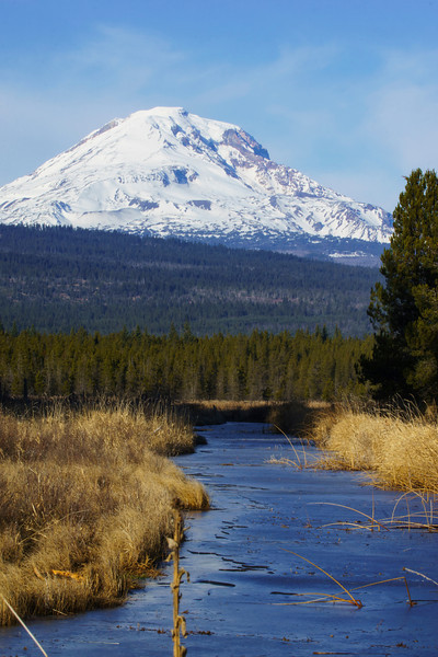 Mt. Adams & Frozen Creek