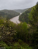 April 19.  View of the Cumberland River from the terrace of the lodge.  Dogwoods are blooming, too.