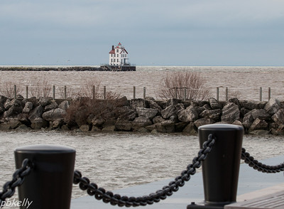 12-22.  Lorain Lighthouse.  Snowy Owl landed on this seawall.