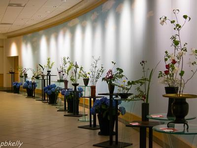May 12.  Cleveland Botanical Garden.  Ikenobo exhibit in the Hall.