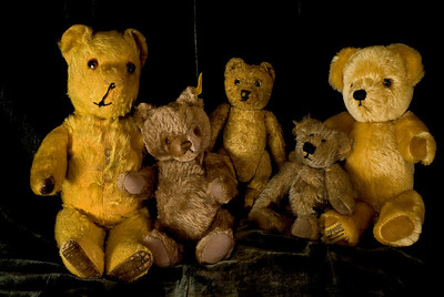 Our teddy bear family. Mine is the one in the middle. Feb 3.