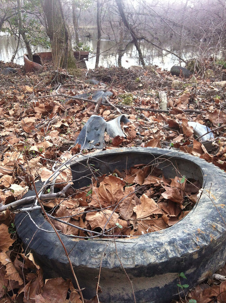 12/29/12: Northern point of the triangle pond, adjacent to the Patapsco River, was a former dumping site. Cleaned up some of these tires but there are plenty more, and some scrap metal too (refrigerator, box spring, rebar, etc.).  Also plenty lurking in the water beyond the refrigerator in the background.