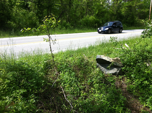 5/10/2013: Spot where drivers have been illegally crossing the berm from Hammonds Ferry Road and running over recently planted trees to get to the access road.
