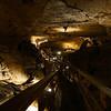 01-18 Cub Run Cave, KY