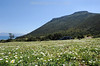 Die zypriotische Halbinsel Akamas im Frühling - Naturschutzgebiet © Andrea Christofi-Hunziker/IMAGOpress.com