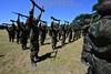 2013-02-22 OS 124 ALUNOS DO ITA APROVADOS NO VESTIBULAR INICIARAM ONTEM E TERMINARAM HOJE UM TREINAMENTO NO CPOR COMO PARTE DAS ATIVIDADES , NA SEGUNDA PROXIMA INICIA AS AULAS NO ITA COM A PRESENCA DO MINISTRO DA DEFESA NA AULA MAGNA / Instruccion militar / Brasilien : Militärische Ausbildung - Gewehre - Soldaten © Lucas Lacaz Ruiz/LATINPHOTO.org