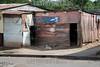 Nicaragua - Granada : Ciudad Granada / Capital Granada / Nikaragua : Wellblechhebausung in der Stadt Granada - Armut - Hund - Plakat mit dem Bild von Daniel Ortega © LATINPHOTO.org