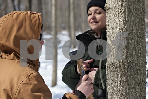 Rob Winner – rwinner@shawmedia.com<br /> <br /> Richard Cavaliere (left), 12, of Rock Falls, uses a rubber mallet to wedge a spile into a pre-drilled hole on maple tree as Peggy Doty, an educator with the University of Illinois Extension, watches during Maple Syrup Fest in Genoa, Ill., Saturday, March 2, 2013.