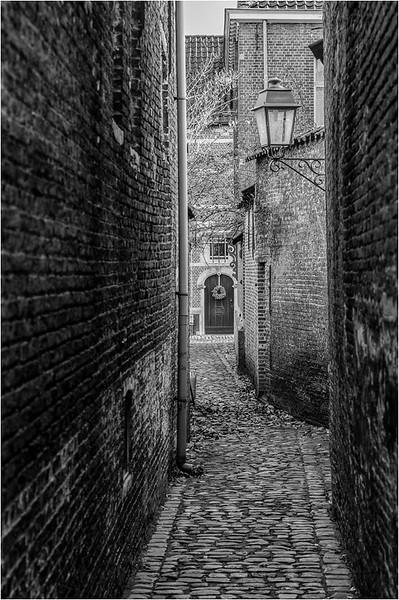 A photo by Pieter Gellings