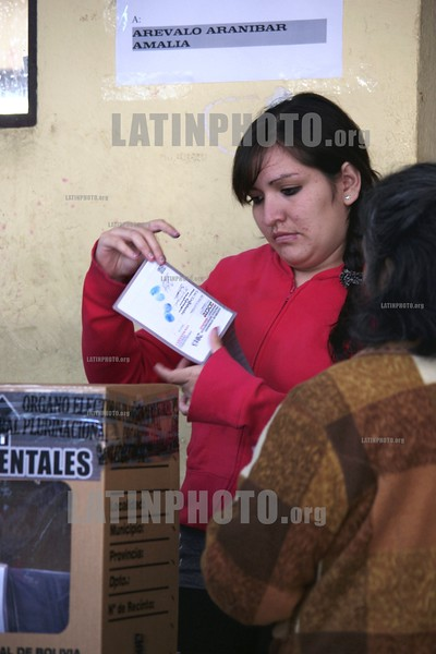 BOLIVIAN-SUBNATIONAL ELECTIONS 2015