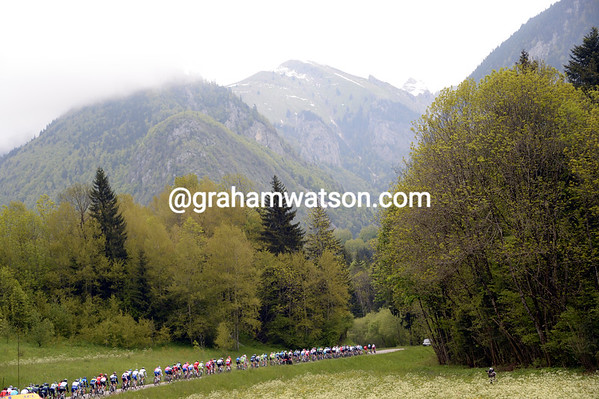 The peloton is in full-flight - they'lll cover 49-kilometres in the first hour..!