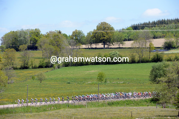 FDJ lead the peloton across some serene countryside...