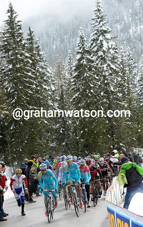 There's a Christmasy look to the backdrop as Astana take control of the stage at the foot of the climb to Tre Cime di Lavaredo...