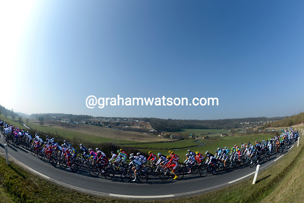 The peloton has yet to stir itself on such a nice, sunny, afternoon...