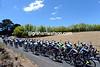The peloton is still enjoying the cool scenery around Adelaide...