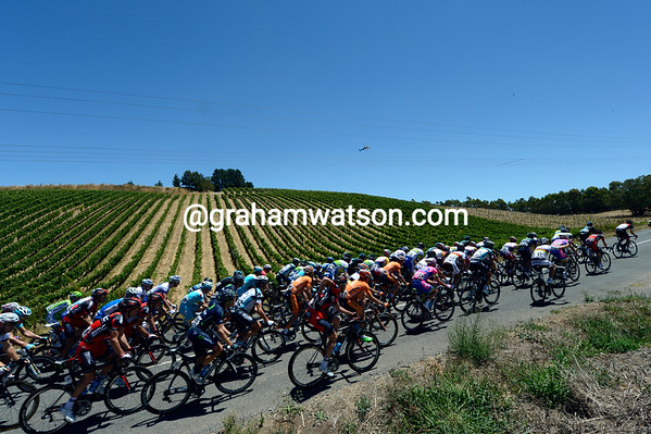 The peloton passes some Adelaide Hills wines with about 30-kilometres to go...