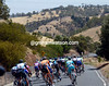 The peloton heads gently for the Adelaide Hills again...