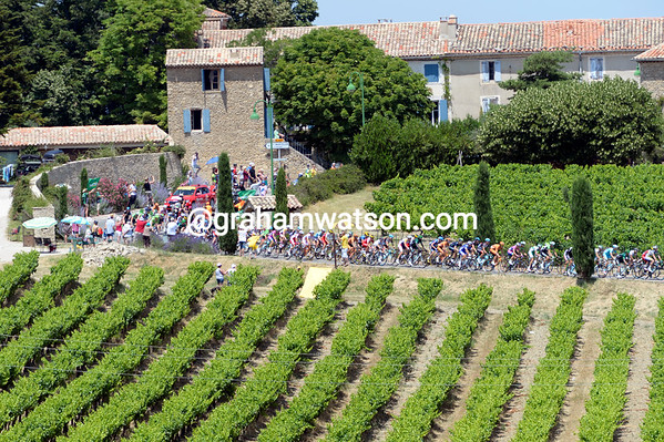 Cote du Rhone-Villages is the wine, Tour de France is the name of the game today...