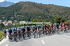 The peloton climbs gently into the Corsican hills, just a few minutes behind the escape...