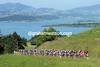 The peloton starts the 3rd-category climb above Zurichsee...