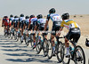 Cavendish looks very comfortable behind his Omega teamates and those of BMC...