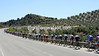 There's no-where to hide as the peloton lines out on another uphill section of the road, this is becoming a very tough day...