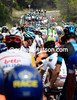There are plenty of attacks in front, but the peloton has been grounded by a big fall...