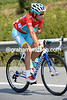 Vincenzo Nibali calls for his troops to chase gently...