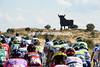 Toro, toro..! There's a big black bull watching the Vuelta's last hour...
