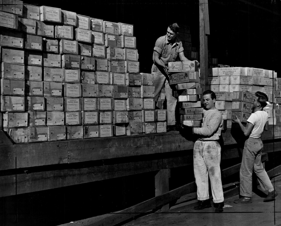 . Saying \'Merry Christmas\' to friends and relatives in all ports of the United States, thousands of Coloradans dispatched holiday gifts of Colorado Pascal celery by parcel post and express Friday. The picture shows a part of the record shipment piled on a loading dock at Union Station on December 20, 1941. The shipments were timed for delivery in any part of the United States possible by next Wednesday.  (The Denver Post Library Archive)