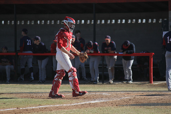 2014 Baseball Game Action