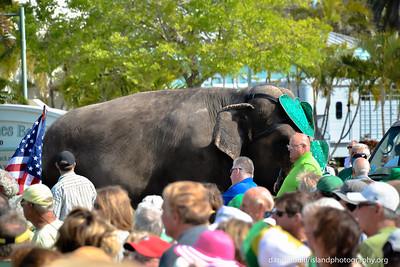 2014 Beach Bistro St Patrick's Day Parade_0014