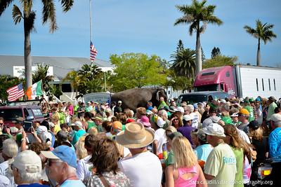 2014 Beach Bistro St Patrick's Day Parade_0015