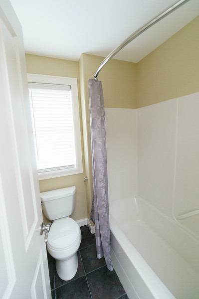 Guest bathroom- toilet and shower.