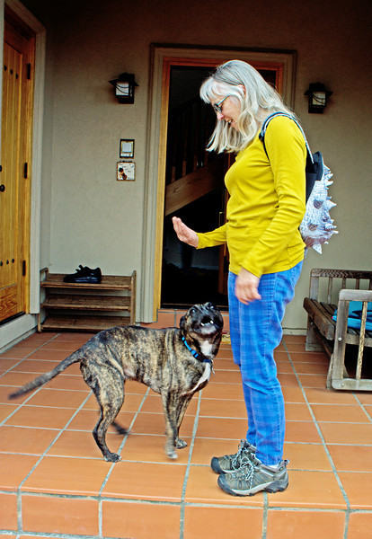 My writing partner, Susan, with her pit bull and spiked backpack.