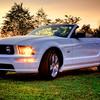Mustang_cooper