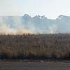 Fire alonside 101 Freeway near Petaluma. I got high from the fumes!