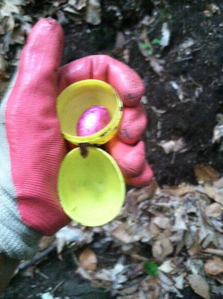 6/6/14: Jessica Cox finds an Easter egg filled with Nestle chocolate in the same area as the lightbulb in Sawmill Branch.