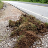 6/11/14: Jon Merryman's cleanup on Race Road in Howard County, Deep Run subwatershed. Found a pile of sod dumped at the side of the road and reported that a pile of plywood, a bag, and some misc. trash needs to be picked up on 6040 Race Road. 60 lbs total.