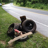 5/24/14: Jon Merryman's cleanup on Race Road, 1/4 mile north of Hanover Road in Howard County, Deep Run subwatershed. Found 5 tires, a pile of trash, and a mound of landscaper yard waste (see previous picture for the yard waste). 125 lbs total.