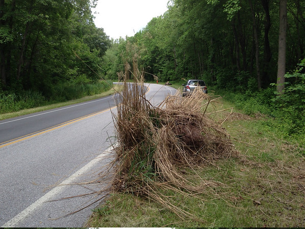 5/24/14: Jon Merryman's cleanup on Race Road, 1/4 mile north of Hanover. Howard County, Deep Run subwatershed. Found 5 tires, some trash in one pile and a big mound of landscaper yard waste. 125 lbs.