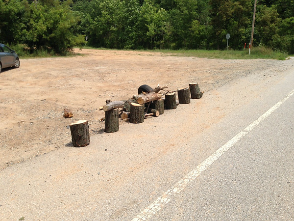 7/12/14: Jon Merryman's cleanup on Furnace Avenue at River Road in A.A. County, Deep Run subwatershed. Found a tire with a log stuck in it and some firewood (someone had grabbed the wood before Highway's could get to it). 20 lbs for the tire.