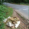 9/2/14: Jon Merryman's cleanup at the corner of Ridge Road and Furnace Avenue in A.A. County, Deep Run subwatershed. Jon found pieces of carpet and padding that was recently dumped into Deep Run. Estimated weight is 80 lbs!