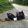 7/19/14: Jon Merryman's cleanup at the bottom of River Road in A.A. County, Patapsco River watershed. Found 3 bags worth of trash; 75 lbs.