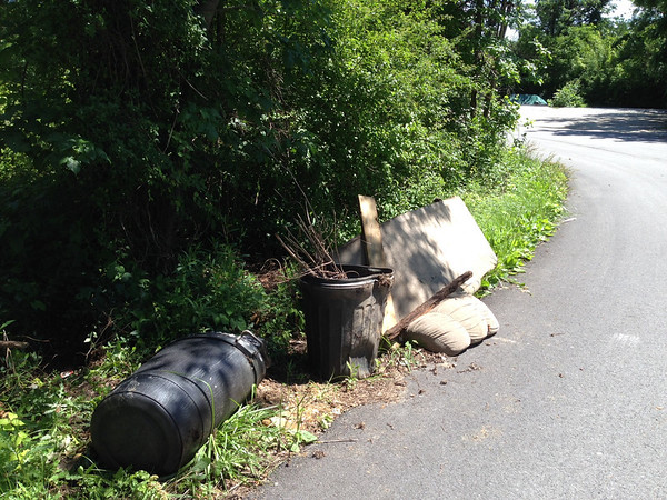 6/20/14: More of Jon Merryman's cleanup on Monumental Avenue in Halethorpe, Baltimore County, Herbert Run subwatershed. Found a sofa bed (60 lbs), two tires (40 lbs), an oil pan, two trash cans with yard waste and tree trimmings (30 lbs) and several garbage bags of contractor scraps (125 lbs), all dumped along the edge of the woods. 255 lbs estimated.