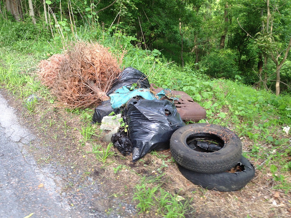 6/2/14: Jon Merryman's cleanup on Hilltop Road, uphill from the hairpin turn in Baltimore County, Patapsco River watershed. Found two tires, bag of wires, bag of yard waste, & a Christmas tree. 75 lbs trash + 40 lbs tires = 115 lbs total.