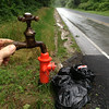 7/3/14: Jon Merryman's cleanup on Race Road, 1/4 mile of Hanover Road in Howard County, Deep Run subwatershed. Found 5 bags of glass and trash. Estimated weight is 125 lbs.