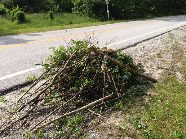 6/3/14: Part of Jon Merryman's cleanup on Race Road in Howard County, Deep Run subwatershed. He found a pile of yard waste.
